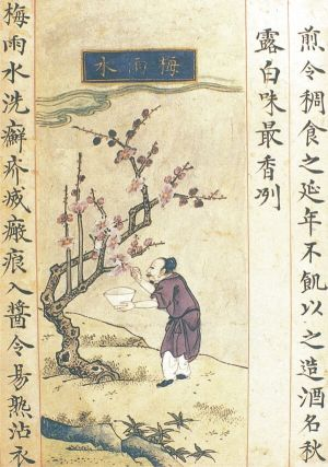 "As early as the Ming Dynasty (1368-1644), the Chinese were writing medical treaties about administering natural treaties against scabies, by decoction of ""plum rain"", the preparation of which is illustrated in the picture above. It would be presumed that such a centuries-old practice gives them the chance to find an antidote to the coronavirus, natural or otherwise, as long as it is effective."